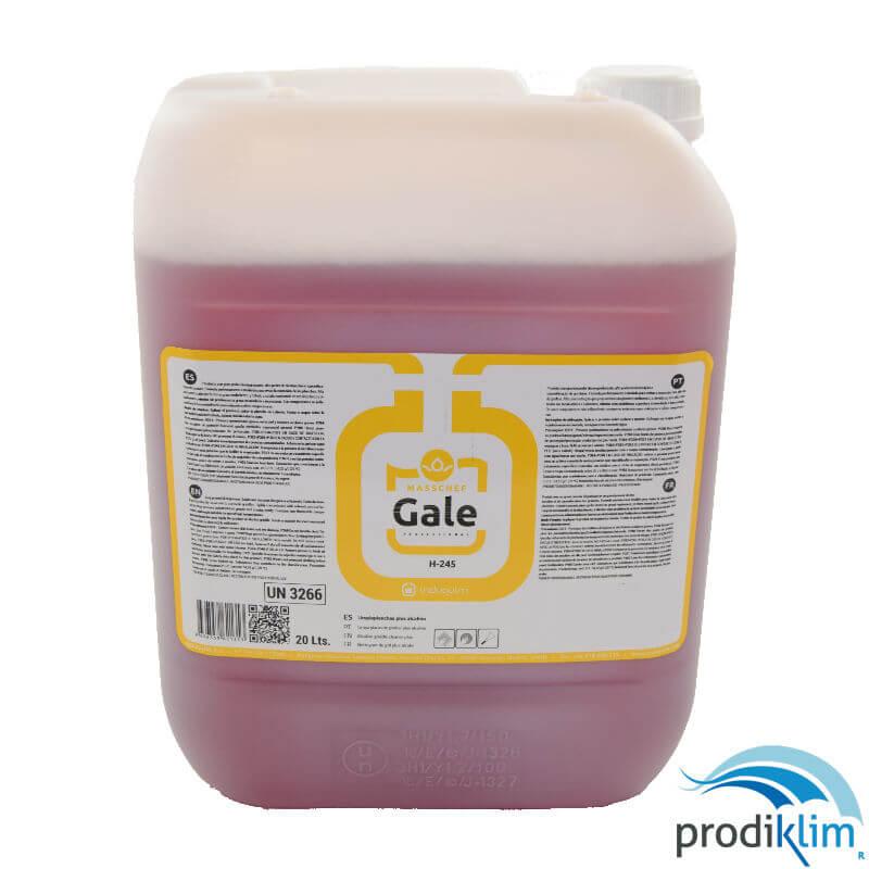 0010828-gale-limpiaplanchas-alcalino-20l-prodiklim